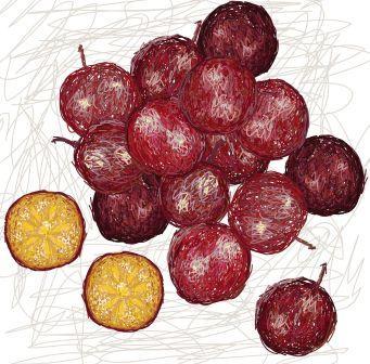 Flacourtia indica fruit
