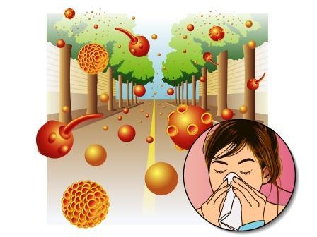 Allergy to pollen